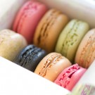 Postcards from Paris - Jour de Macaron