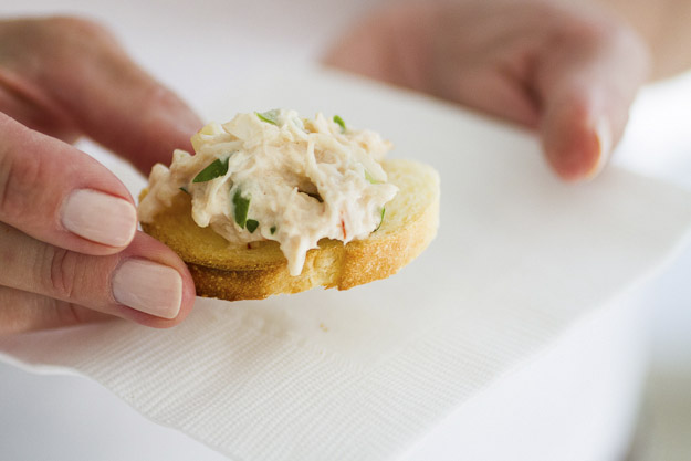 Spicy New England Crab Dip Recipe – Postcards from Maine – Sailing ...