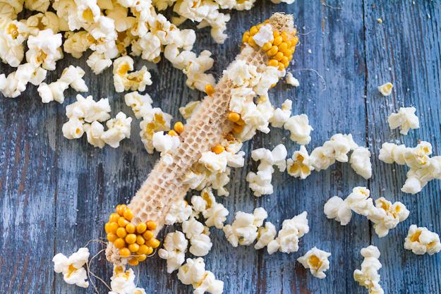 Popcorn 005